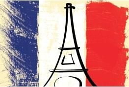 21分钟学会法语(词汇+语法)